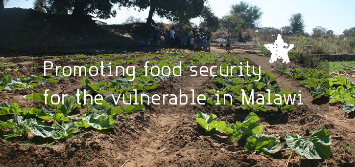 Promoting food security