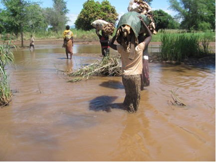 Carrying wood thru' flood